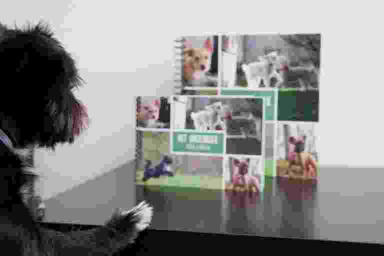 Het groeiboek voor honden